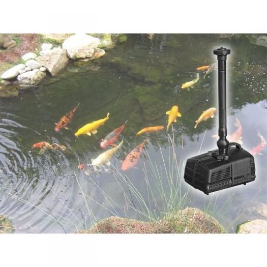Les quipements n cessaires un bassin de jardin for Pompe bassin exterieur